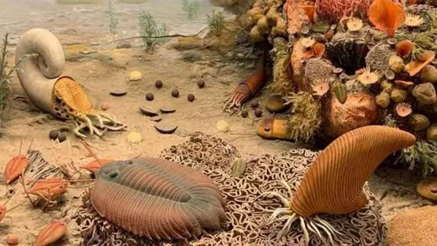 Así eran las criaturas de hace 450 millones de años que respiraban a través de sus patas