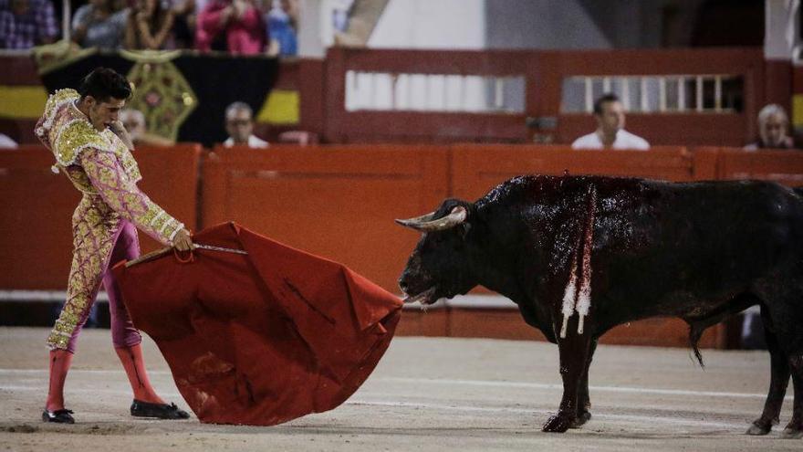 Palma kündigt strenge Kontrollen für geplanten Stierkampf an