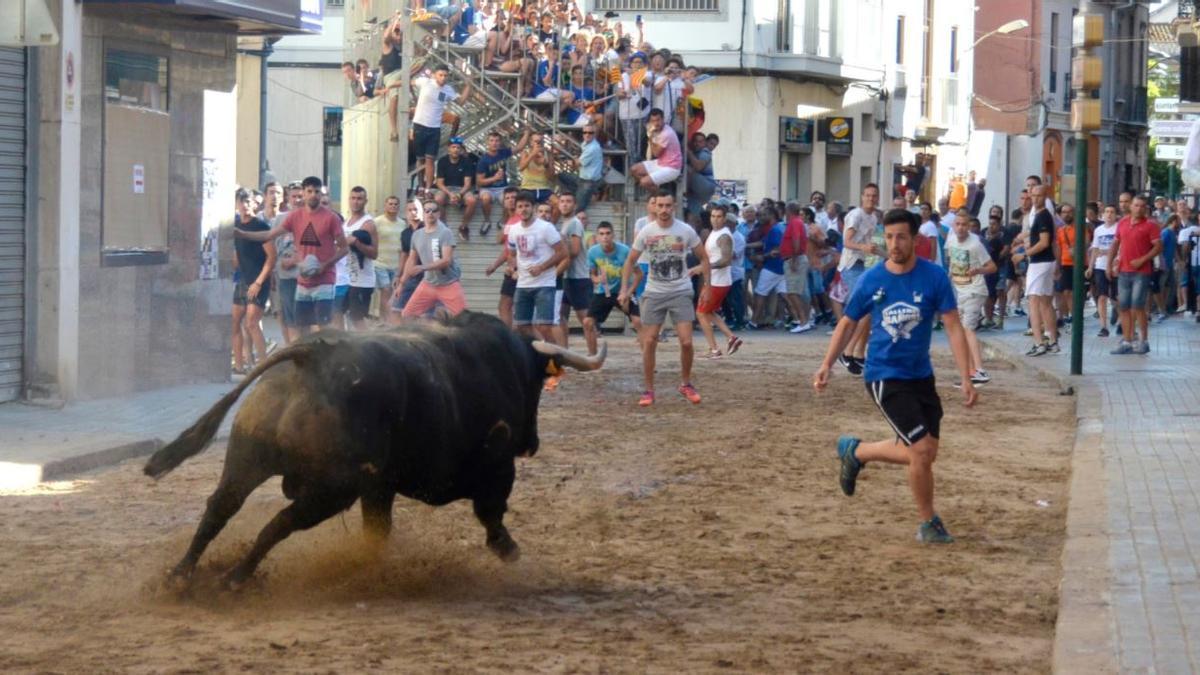 Momento de un festejo taurino en la calle de un pueblo valenciano