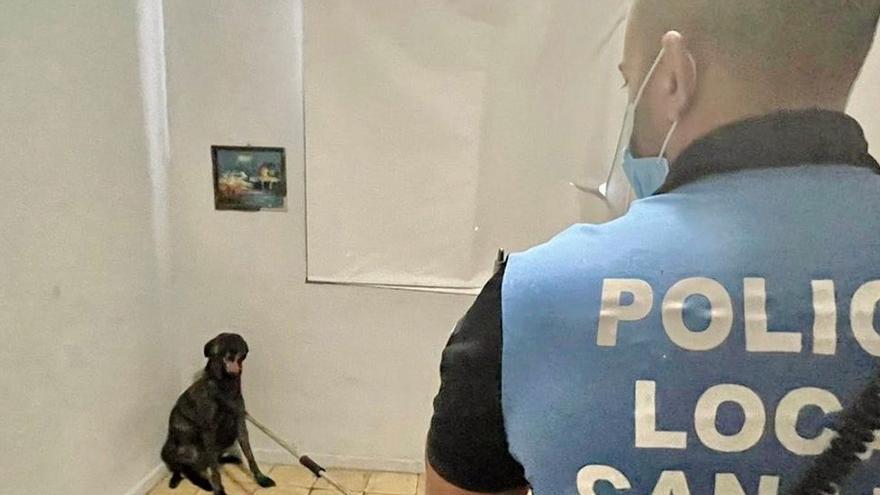 El ataque de un perro obliga a un policía de Avilés a pegar un tiro al suelo para defenderse