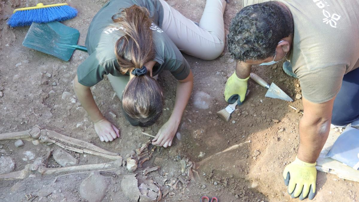 Aparecen restos que evidencian la existencia de una nueva fosa en el cementerio de la Salud de Córdoba.