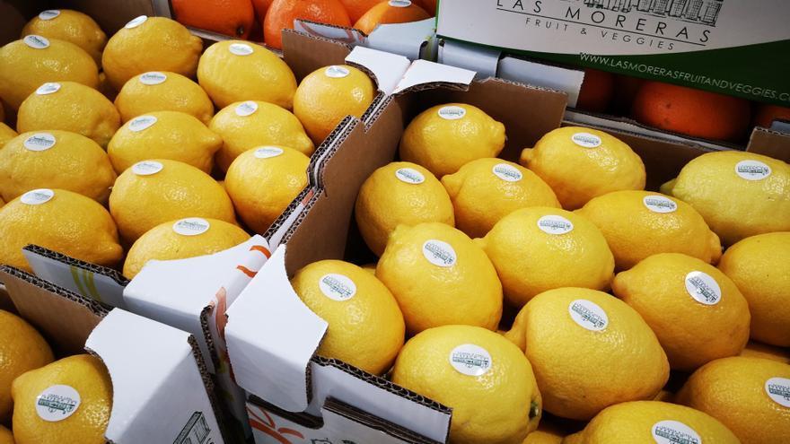 """TM lanza la marca """"Las Moreras Fruit & Veggies"""" para desarrollar su negocio agrícola"""
