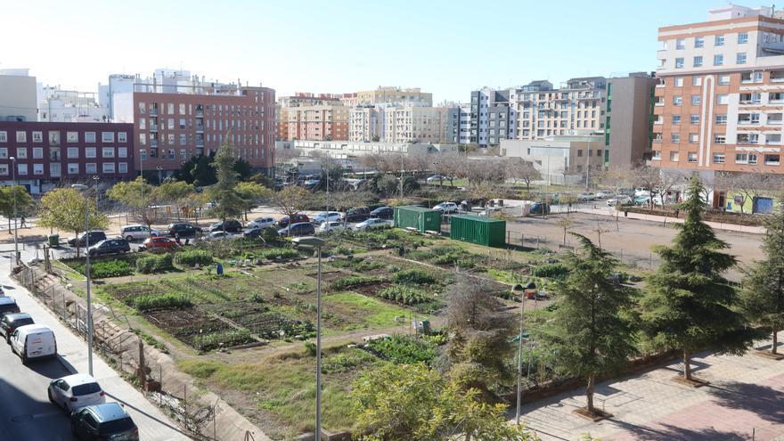 La Generalitat mejorará el proyecto de la nueva residencia de mayores de Castelló