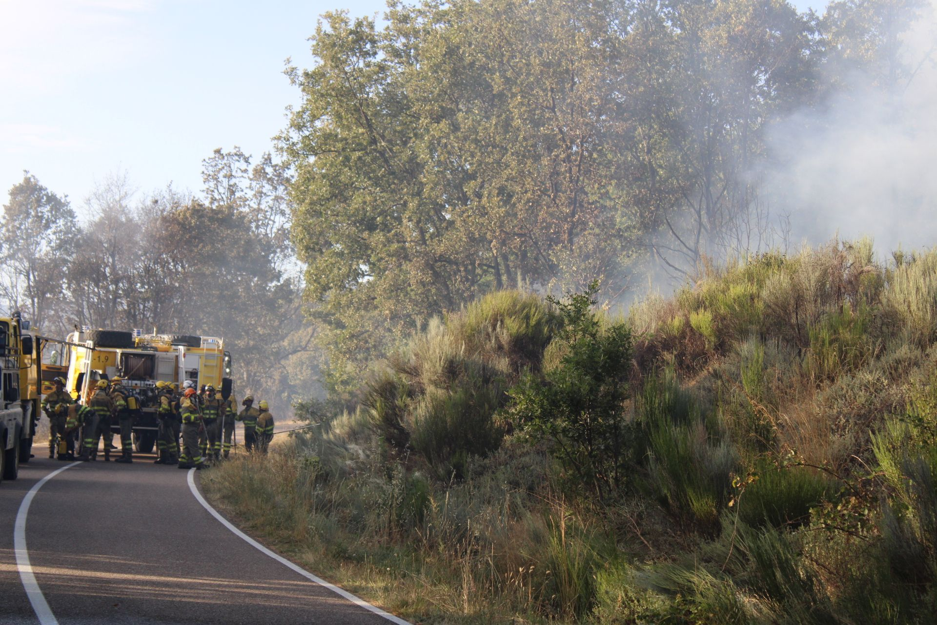 Incendio en Asturianos.