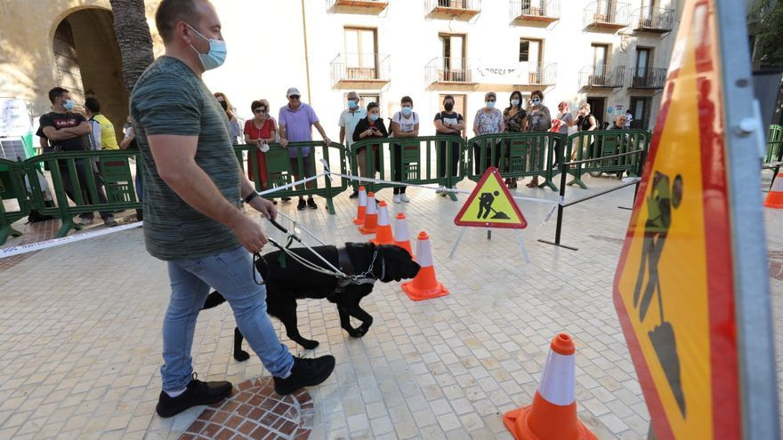 Exhibición de perros guía en Elche para sensibilizar
