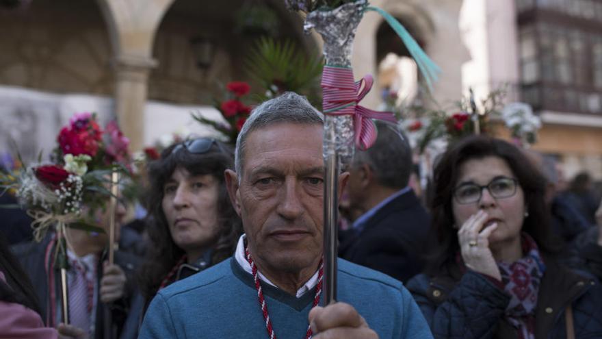 Revive la Semana Santa de Zamora 2019