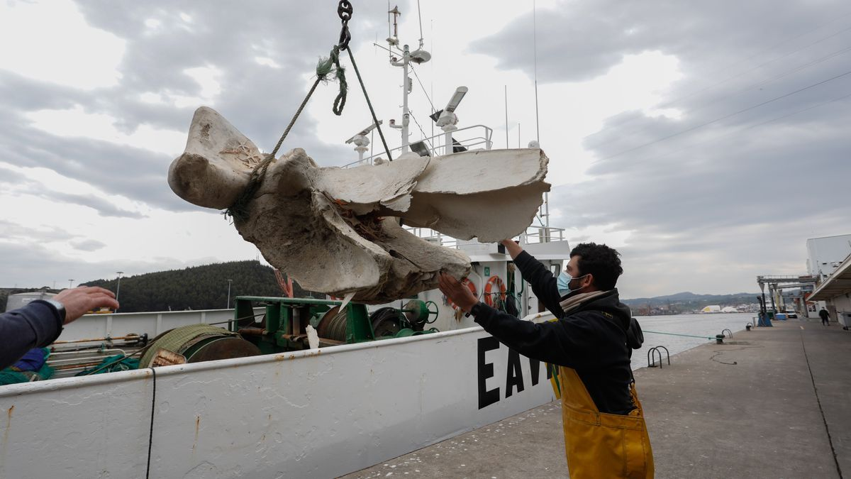 """Pelayo Domínguez, del """"Loremar"""", durante la descarga en el muelle pesquero."""