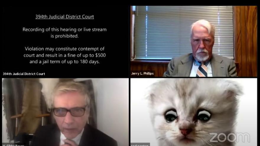 """Un abogado se """"convierte en gato"""""""