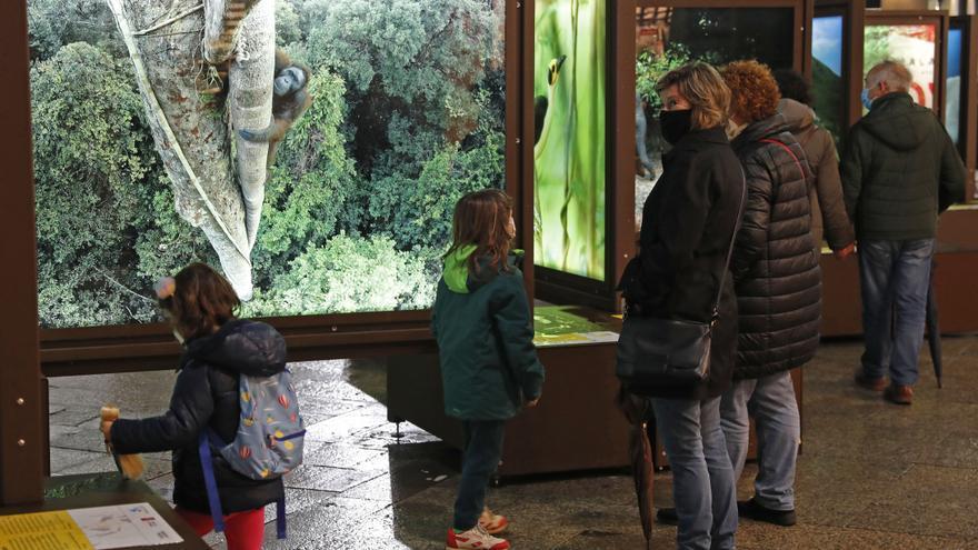 La naturaleza de National Geographic sale a la calle en Vigo