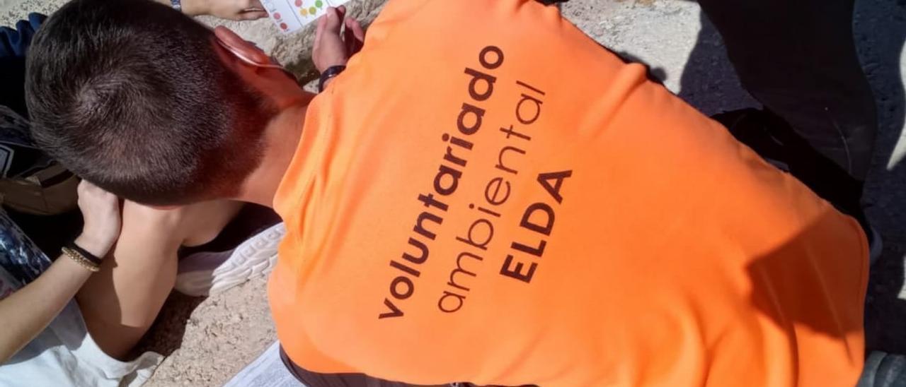 Voluntariado ambiental de Elda en una de sus actividades.