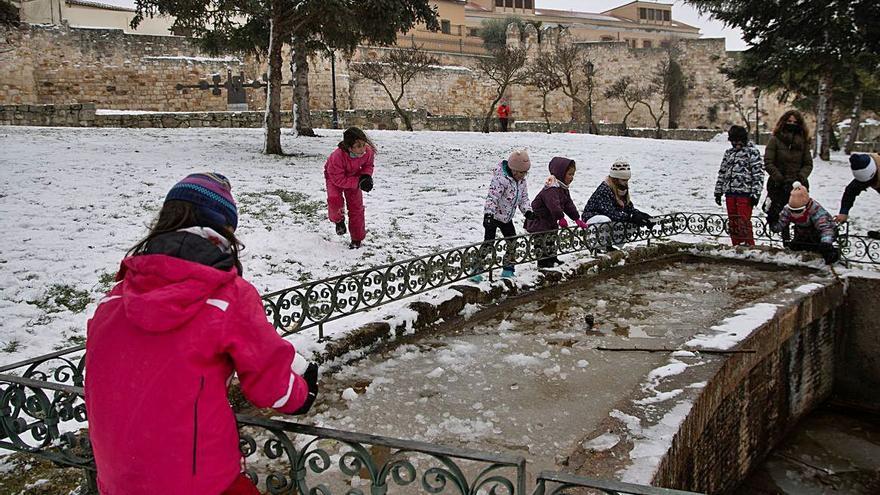 Nieva en Zamora