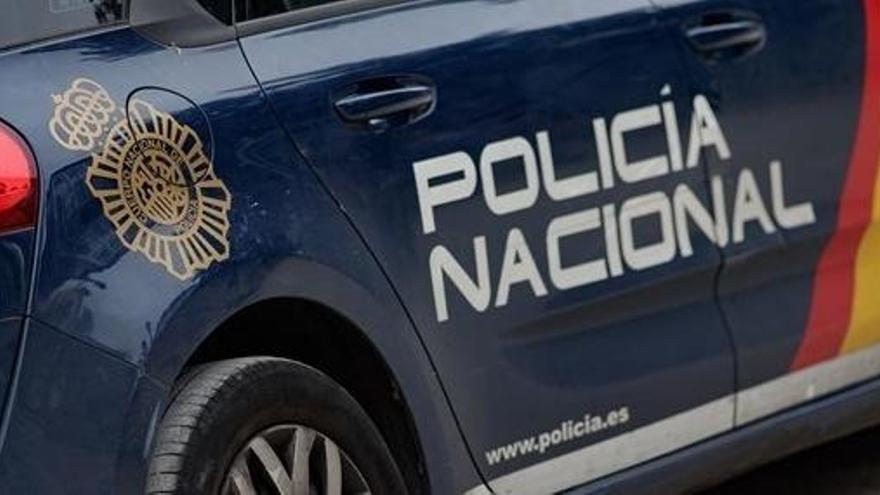 Hallan el cadáver de una mujer devorado por sus perros en su casa de A Coruña