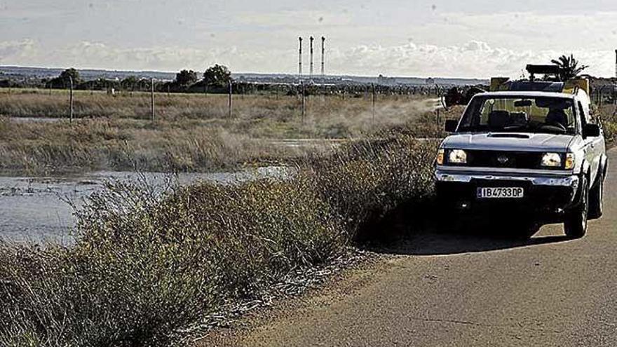 Dalmau amenaza con rescatar la gestión del parking de s'Escorxador