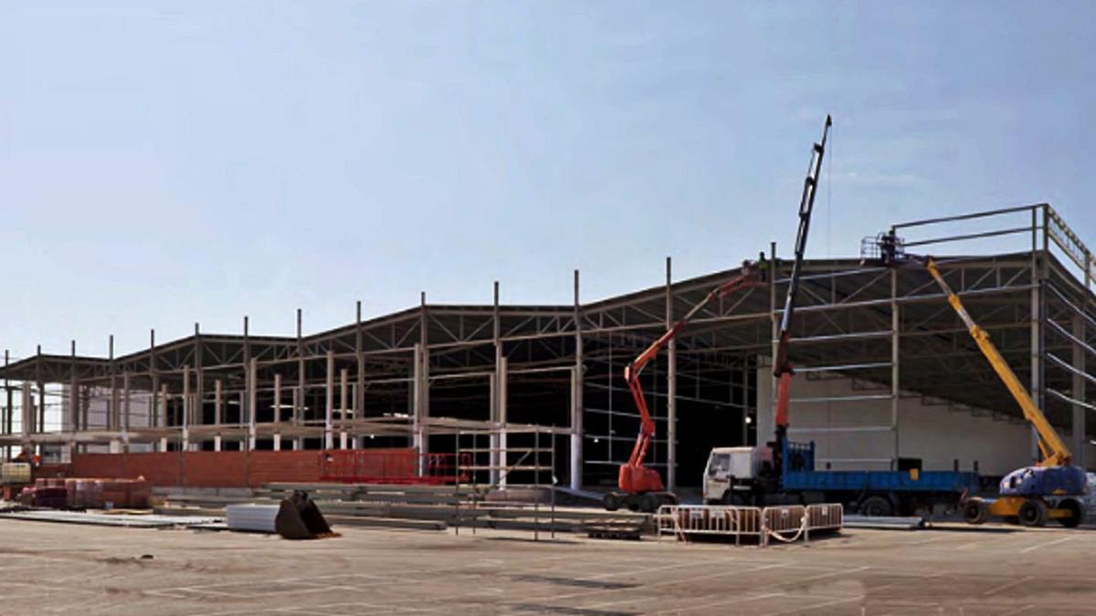Construcción de la nueva planta de Argenta en la localidad de Vall d'Alba. | LEVANTE-EMV