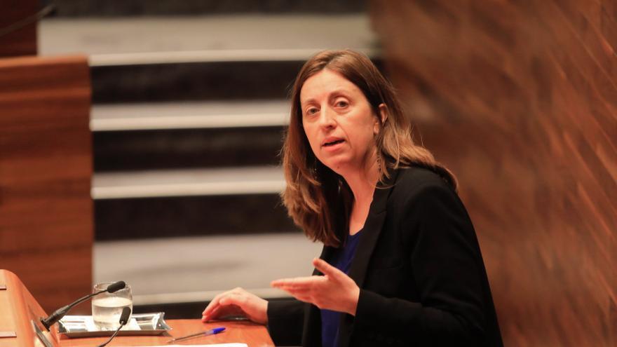 Lorena Gil, portavoz de Podemos, dimite como diputada y deja la política