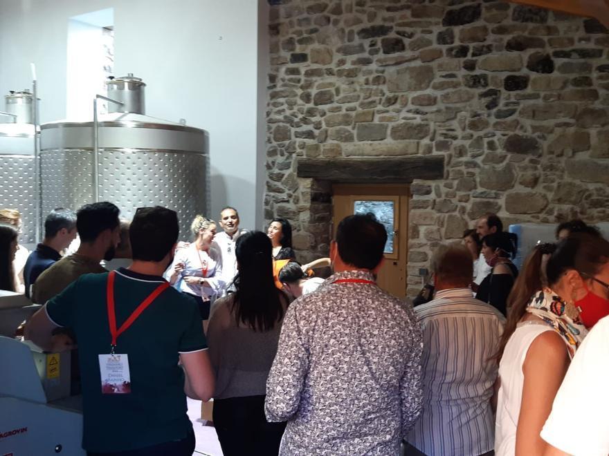 Un grupo de visitantes en una bodega de Fermoselle, en la DO Arribes.