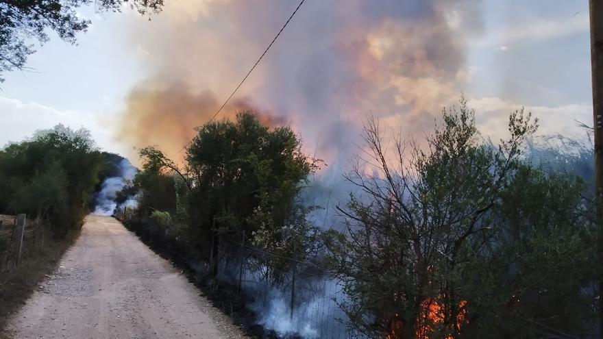 Declarado un incendio en el Torrent de Massanella en Selva