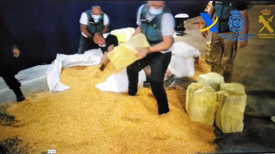 Intervenida más de una tonelada de cocaína oculta entre sacos de millo en Gran Canaria