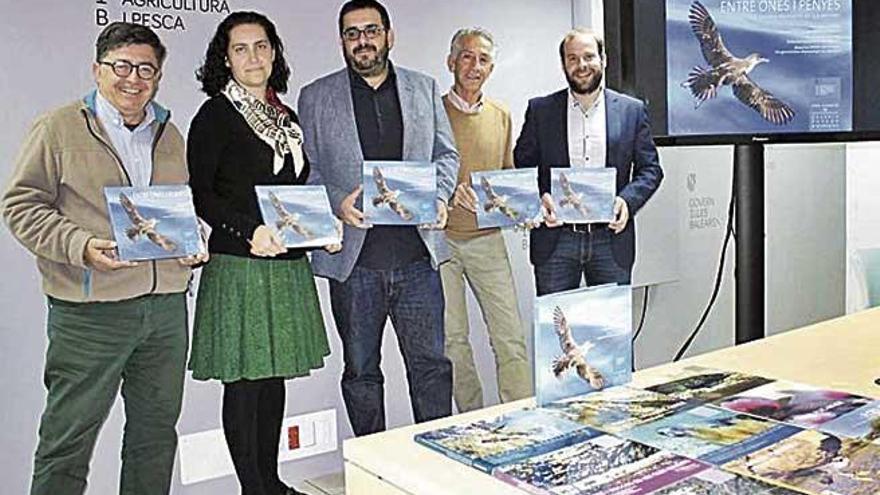 Medio Ambiente publica un libro sobre las aves marinas amenazadas