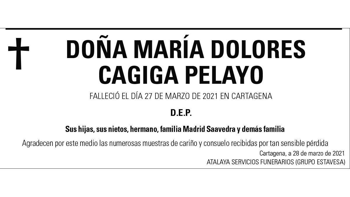 Dª María Dolores Cagiga Pelayo