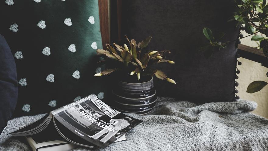 Ideas para redecorar tu casa con plantas y convertir tu hogar en un lugar más relajante