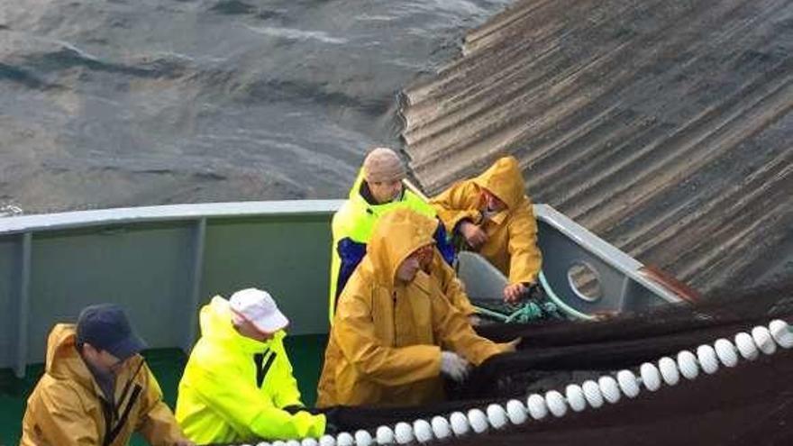 El mal tiempo lastra la pesca del jurel, única especie que captura el cerco