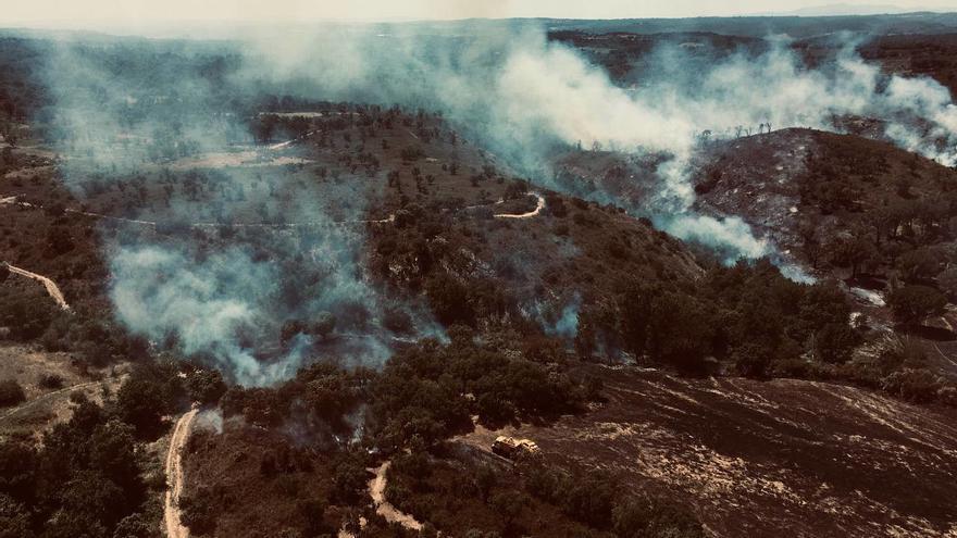 Els Bombers treballen en un incendi forestal a la zona del Mas de la Pena de Capmany