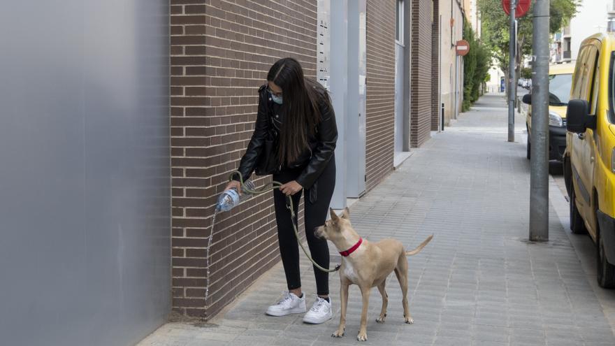 La nova ordenança d'animals de Figueres comença aplicar-se a partir d'avui