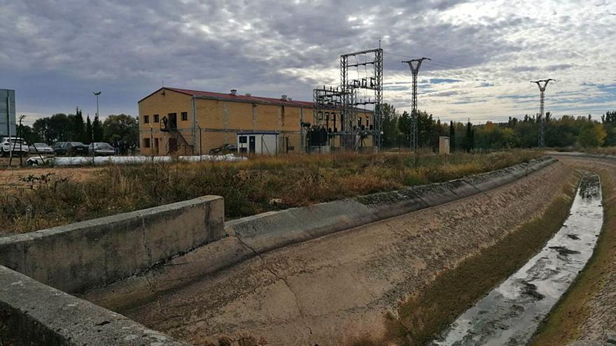La campaña de riego del canal Toro-Zamora peligra por un hongo briozoo que obstruye los hidrantes