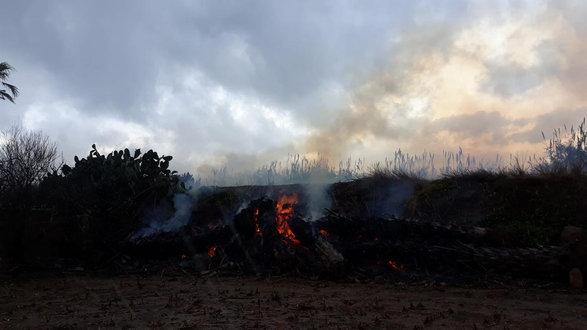BALEARES.-Sucesos.- Extinguido un pequeño incendio forestal en Sa Pobla que ha quemado 0,05 hectáreas de cañizo