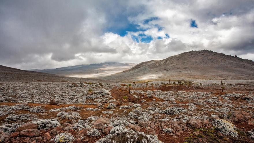 Hallada en Etiopía la prueba de asentamientos humanos prehistóricos a gran altura