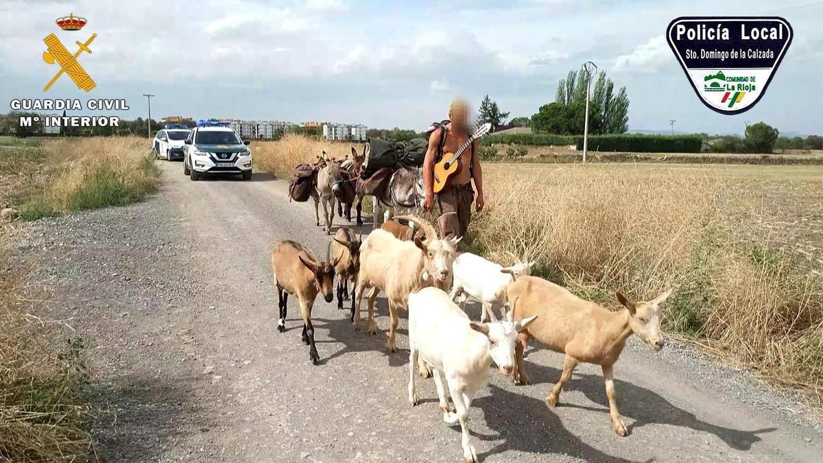 El peregrino que caminaba con siete cabras, tres burros y un perro.