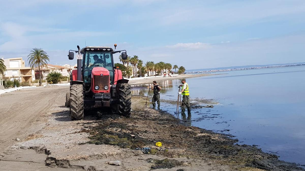 Operarios trabajando en el litoral cartagenero