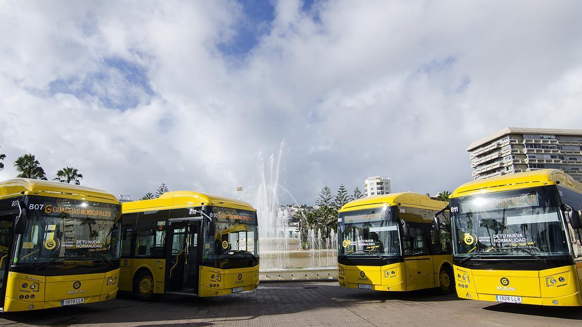 Nuevos vehículos adquiridos por Guaguas Municipales