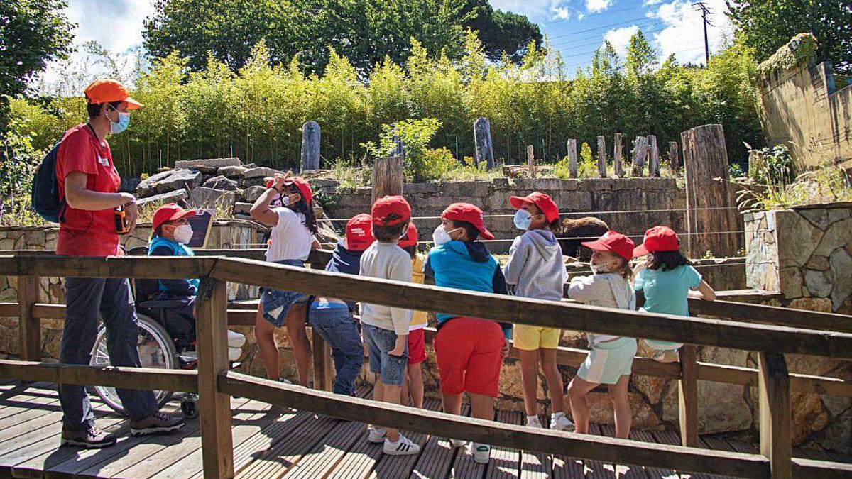 Los menores disfrutaron de Vigozoo en la jornada de apertura de los campamentos municipales.
