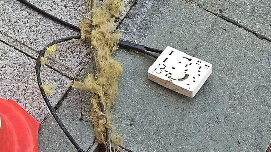 Decenas de afectados en Porriño por una plaga de ratones que destroza la red de fibra óptica