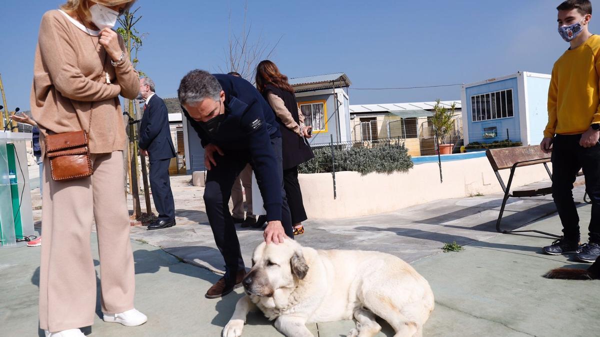 Elías Bendodo acaricia un perro en la Protectora de Animales bajo la mirada de Esperanza Oña.
