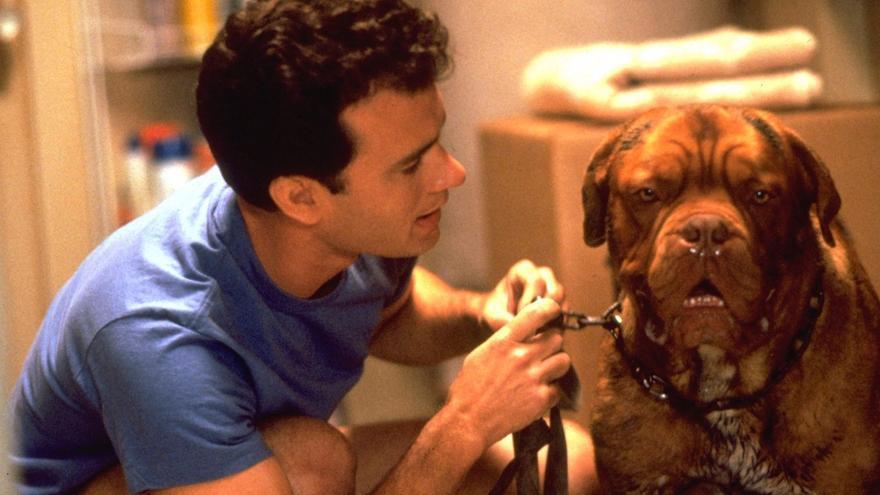 ¿Por qué Tom Hanks está muerto en la serie 'Socios y sabuesos'?