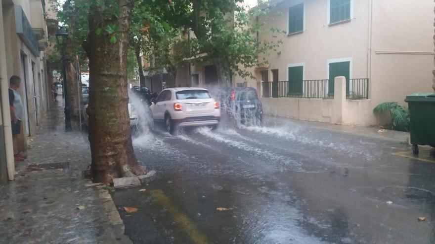 Blitz setzt Palme in Sant Joan in Brand