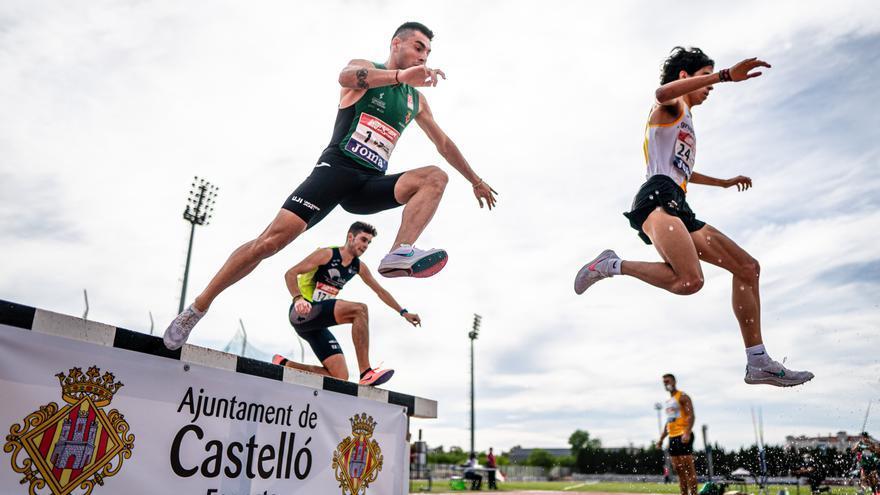 El Playas de Castellón reina en la División de Honor de atletismo