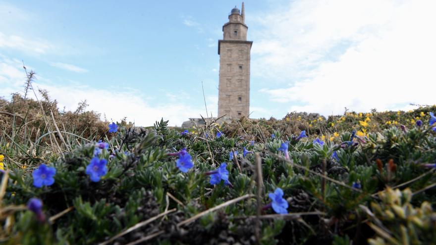 A Coruña encara un fin de semana con sol y temperaturas a la baja