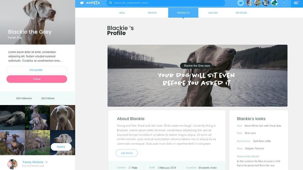 MoPETS, la comunidad online que conecta a los amantes de las mascotas.