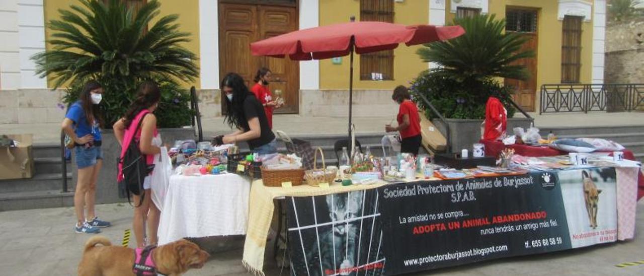 La jornada transcurrió en la plaza del Ayuntamiento. | V. RUIZ SANCHO