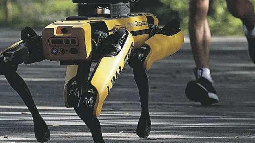Singapur utiliza robots 'caninos' para vigilar las distancias en espacios públicos