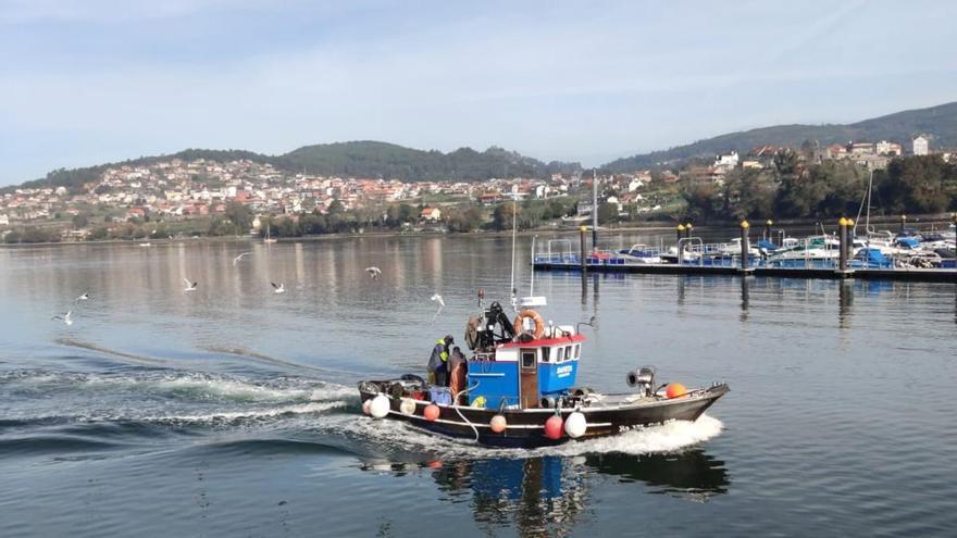 Bruselas asegura que la flota pesquera siguió siendo rentable pese a la pandemia
