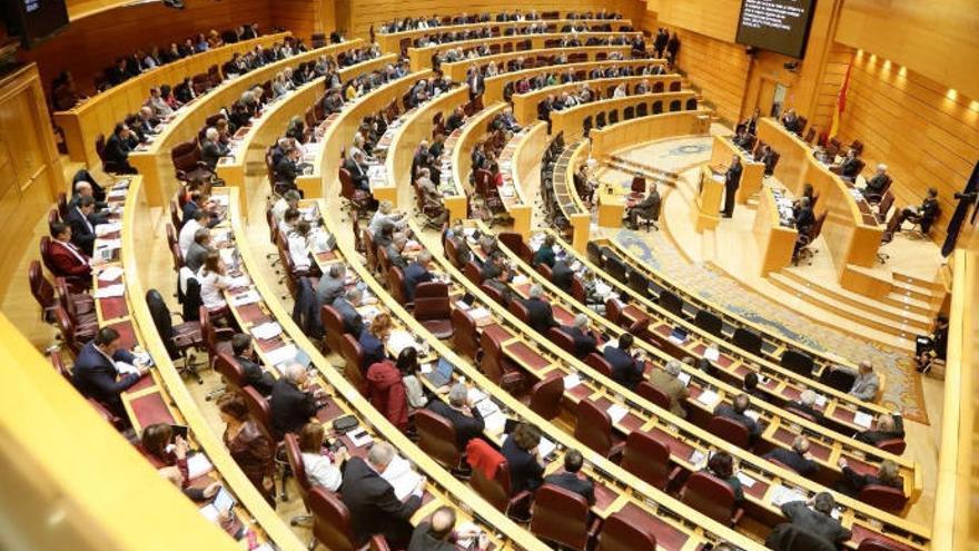 El Senado rechaza tramitar por la vía de urgencia Estatuto y REF