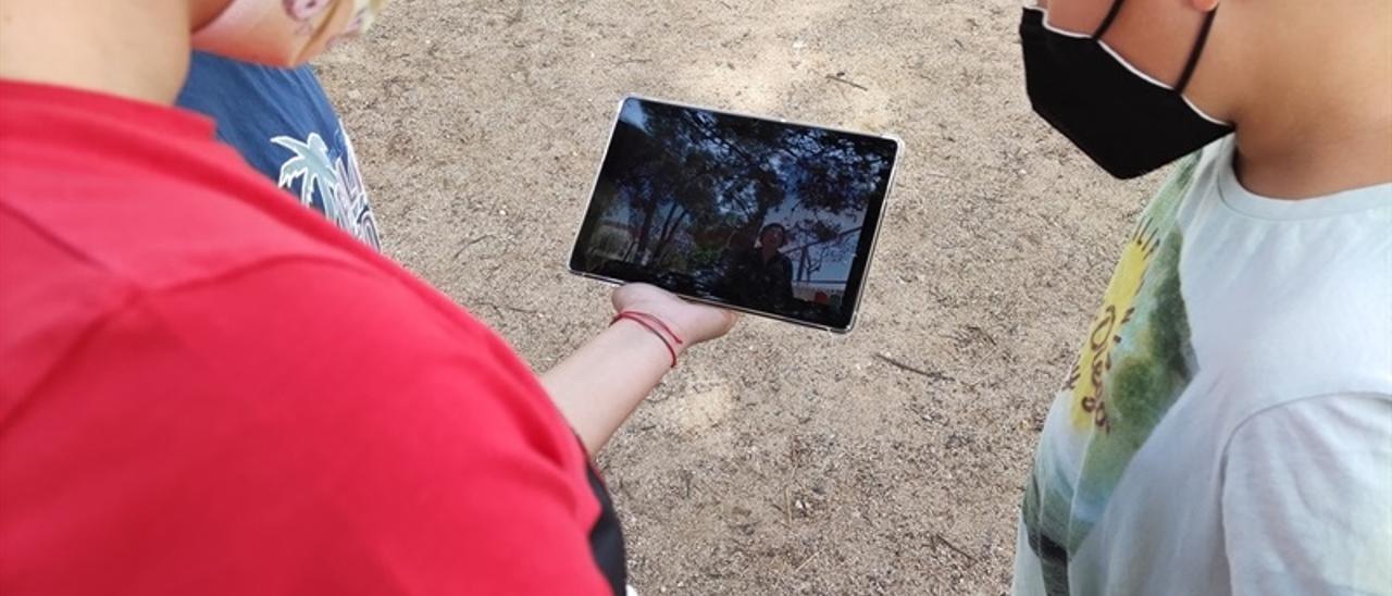 Búsqueda de información sobre los árboles con las tabletas.