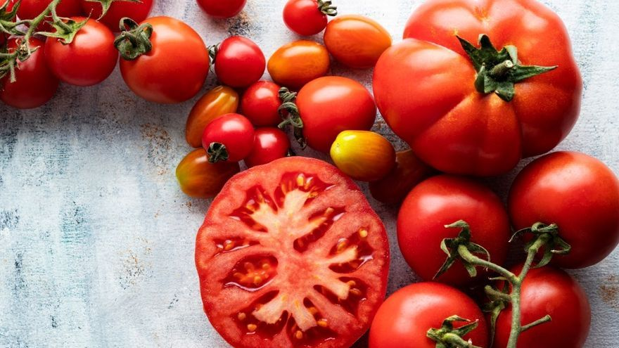 El tomate español, 'actividad esencial' en peligro de extinción