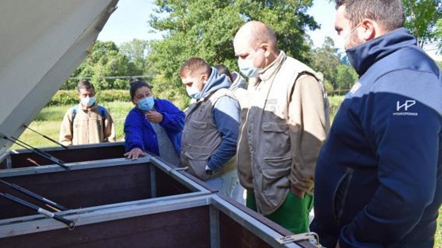El compostaje llega al taller de empleo de Valga