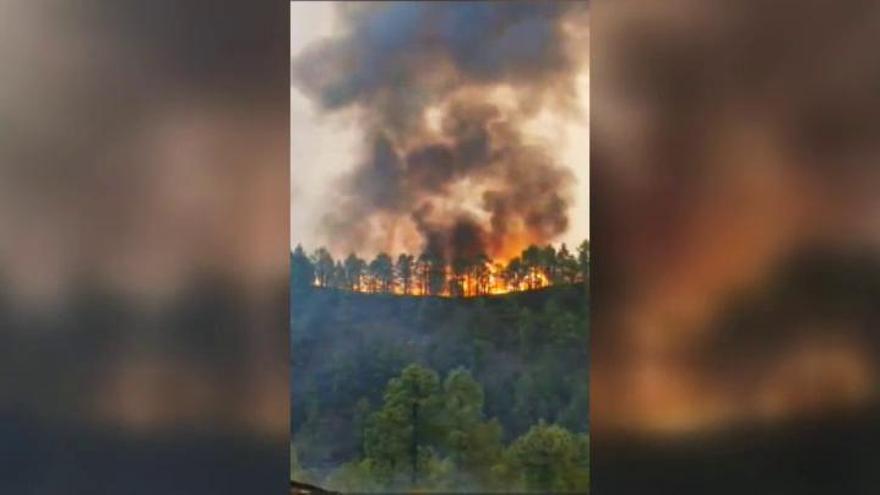 Dan por estabilizado el incendio de La Palma
